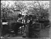 Titre original :  Photograph Francis Peabody Sharp saving apple seeds, Woodstock, NB, 1901 Edwin Tappan Adney 1901, 20th century Silver salts on glass - Gelatin dry plate process 16 x 21 cm MP-1979.111.108 © McCord Museum Keywords:  outdoor (47) , Photograph (77678) , portrait (53878)